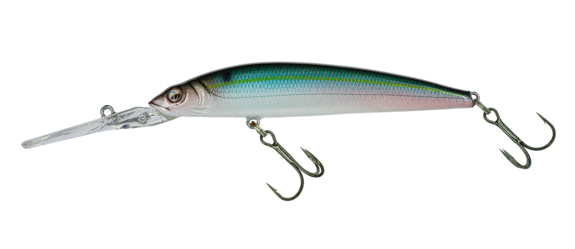 457 Threadfin Shad