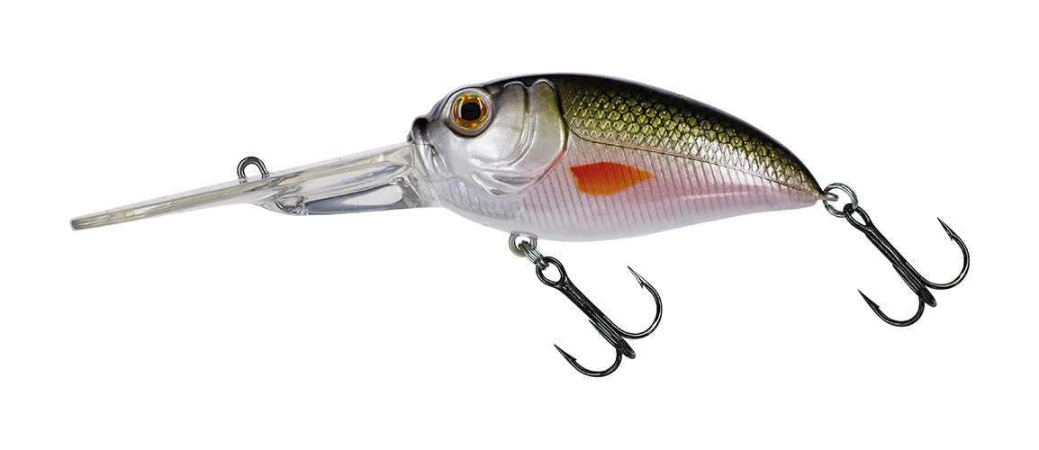 #326 MX Tennessee Shad
